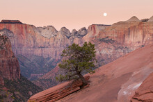 Scenic View Of Full Moon Over Zion National Park In Sky At Dusk