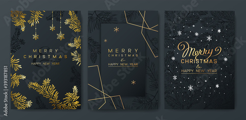 Christmas Poster set. Vector illustration of dark Background with branches of Christmas tree.