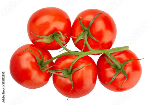 Fotografia, Obraz tomato branch path isolated on white top view
