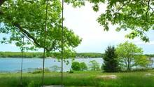 Bucolic Tilt Shot Of Scene Of Tree Swing Overlooking Stunning Harbor In Maine In Summer