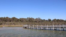 Static Shot Of Lake Clifton Thrombolites, Shallow Water And Old Jetty