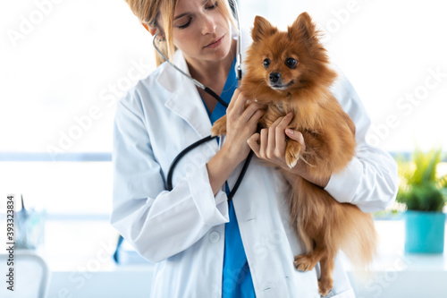 Obraz Beautiful young veterinarian woman using stethoscope to listening to the heartbeat of cute lovely pomeranian dog at veterinary clinic. - fototapety do salonu