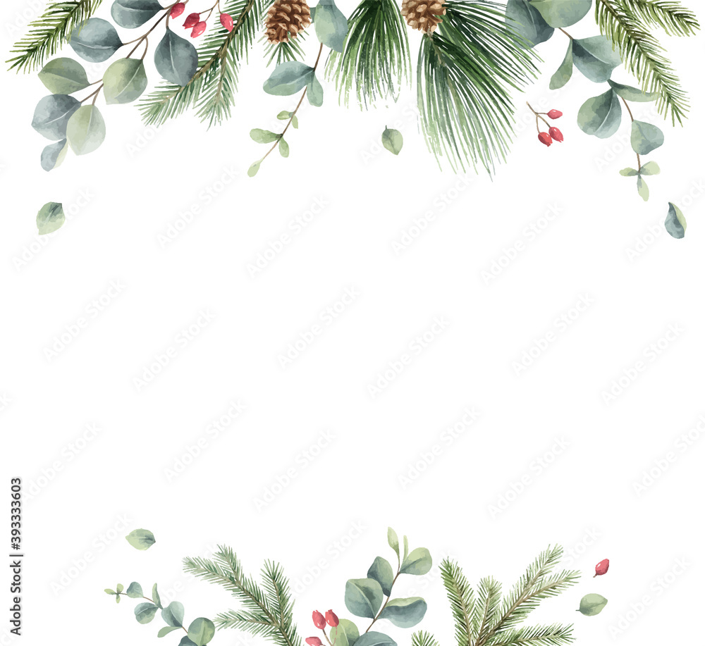Fototapeta Watercolor vector Christmas card with fir branches and eucalyptus.