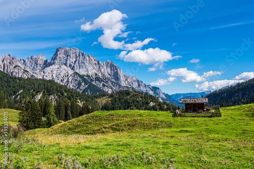 Blick auf die Litzlalm mit Hütte in Österreich #393354075