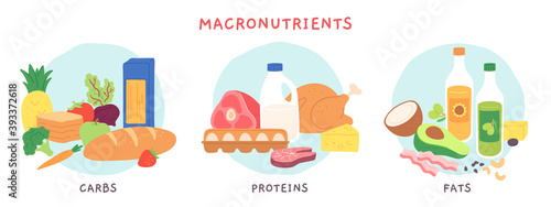 Fototapeta Food macronutrients. Fat, carbohydrate and protein foods groups with fruits and dairy products. Nutrient complex diet vector infographic. Illustration eating ingredient, grocery nutrition for cooking obraz