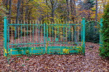 Abandoned And Rusty Wrought Iron Gate Green With Yellow, Abundant Trees With Yellowish-green Foliage, Ground Covered With Autumn Leaves In The Meinweg Nature Reserve In Middle Limburg, Netherlands