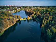 Trees Covering Lake In City