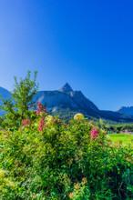 Austria, Tyrol, Clear Blue Sky...