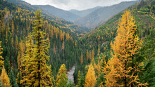 Idaho Valley In Fall