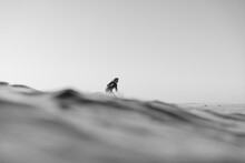 Surfer On Wave In The Ocean