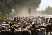 Rural Life In Xinjiang, China