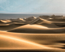 Golden Sand Dunes