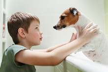 A Little Boy Washes His Dog At Home.
