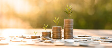 Growing Money, Business Finance And Saving Money Investment , Money Coin Stack Growing Graph, Plant Growing Up On Coins. Balance Savings And Investment.