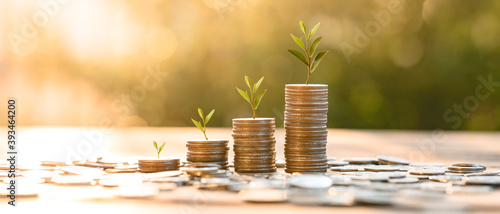 Fotografia Growing Money, business finance and saving money investment , Money coin stack growing graph, plant growing up on coins