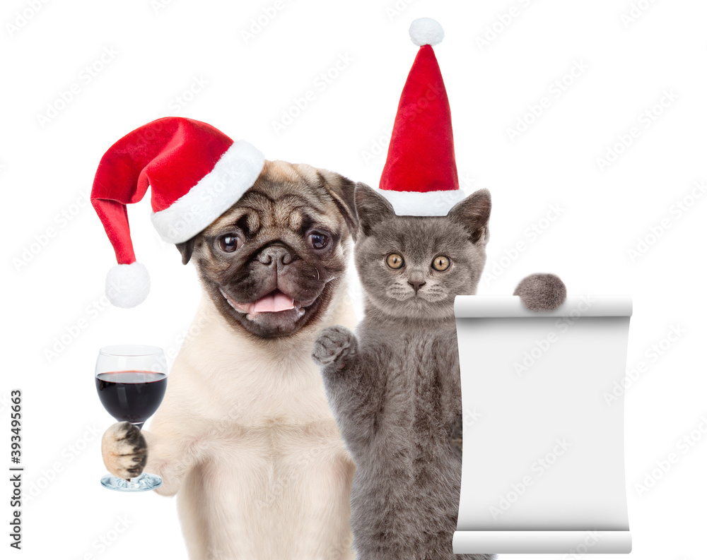 Fototapeta Funny cat holds empty list. Pug puppy holds glass of wine. Pets wearing red christmas hats. isolated on white background