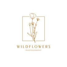 Floral Poppy Label For Package. Wildflower Linear Logo Sketch. Floral Frame Emblem For Wedding, Photographer Brand