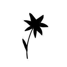 Hand-drawn Simple Vector Drawing. Black Silhouette Of A Small Flower Isolated On A White Background. Element Of Nature, Plant.