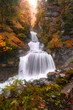 canvas print picture - Vertical view of a waterfall stream surrounded by rocks in autumn