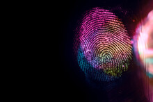 Close Up Beautiful Abstract Multi Colored Fingerprint On  Background Texture For Design. Macro Photography View.