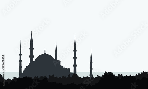Fotografie, Obraz Turkey mosque landmark