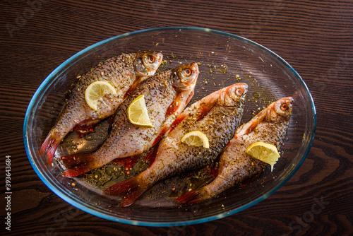 Photographie European perch fish, Perca fluviatilis