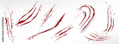 Canvas Print Cat claw scratches with blood drops, red torn slashes from wild animal, tiger, bear or lion paws isolated on white background