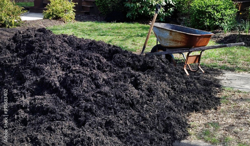 Canvas Print Heap of black gardening mulch with weathered wheelbarrow.