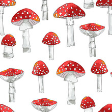 Hand Drawn Seamless Pattern Amanita Mushrooms Vector Illustration