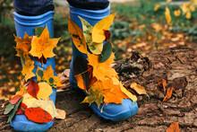 Blue Rain Boots With Autumn Co...