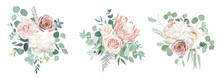 Pale Pink Camellia, Dusty Rose, Ivory White Peony, Blush Protea, Nude Pink Ranunculus