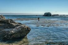 Sea  Kayaking. Exploring Caves, Arches, And Rocks At Pismo Beach, California