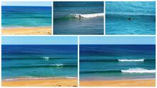 Collage Of Logan's Beach Whale...
