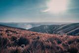 beautiful sunset bolivian prairies - 394023476