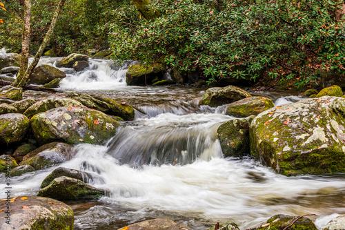 Fotografia water flowing in roaring fork creek