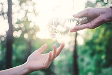 Cropped Image Of Hand Giving Light Bulb To Person