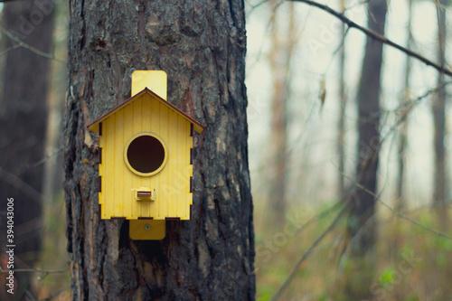 Fotografia wooden bird house