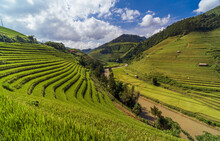 Terraced Rice Fields, Mu Cang ...