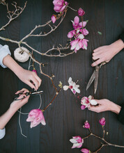 Overhead Hands Making Natural Decorations