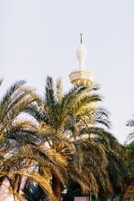 Mosque In Jordan