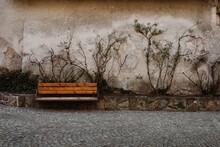 Plant Climbing On Cracked Wall Behind Wooden Frozen Bench In Alpine Village