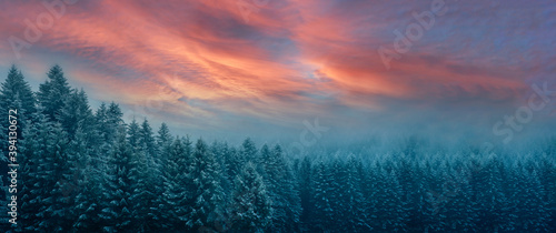 Fototapeta Picturesque wide winter panorama of Carpathian Mountains at sunrise in an early morning (cinematic color grading) obraz