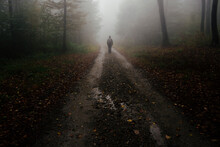 Man Lost In The Fog In Mysteri...
