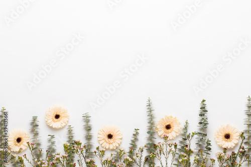 Obraz na plátně Spring greeting card, pastel color gerbera flowers on the white background