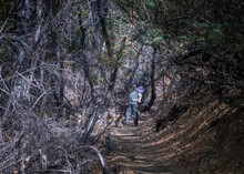Hiking In Big Morongo Canyon Preserve In Morongo Valley, CA.