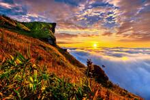 Phu Chi Fa And Mist At Sunrise...