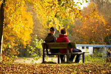 Couple Sitting On Bench In The...
