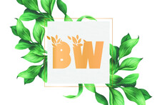 BW B W Initial Floral  Abstract  Logo Template Vector Image.