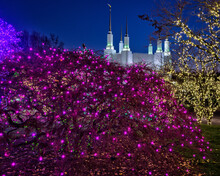 The Mormon Temple, During The Festival Of Lights, In Kensington, Maryland