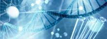 DNA  Und Genetischen Forschung